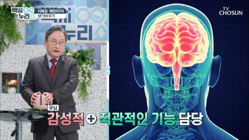 치매 예방하는 '외국어 배우기'✍ 이른 포기는 NO!
