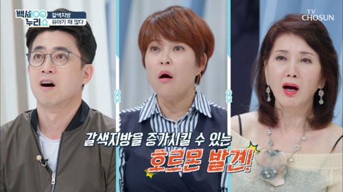 다이어트 효과 UP ↗ '갈색지방' 후천적 증가?!