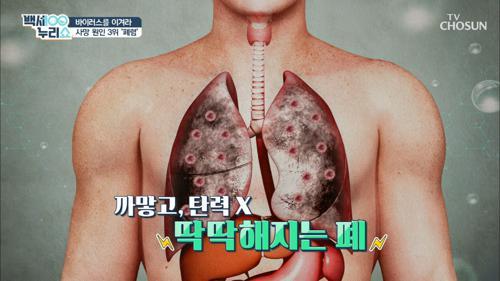 손상되면 회복 불가 『폐·호흡기 질환』 Q&A