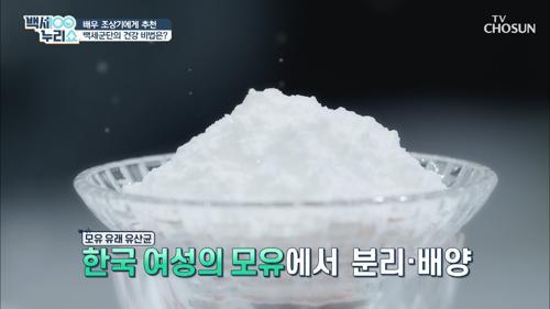 장 건강과 체중 조절에 도움 주는 ▷모유 유래 유산균◁ TV CHOSUN 20210224 방송