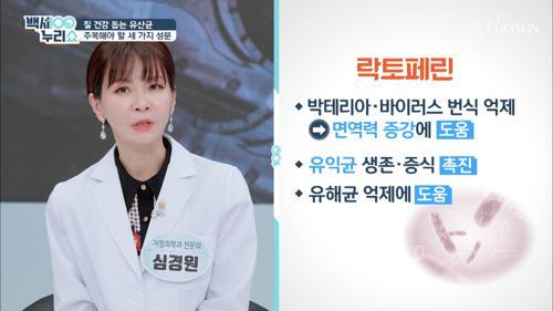 「질 건강 유산균」 주목해야 할 세 가지 성분✓ TV CHOSUN 20210324 방송