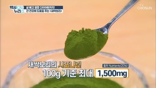 염증타파😀 몸속 노폐물 배출에 탁월한 『새싹보리』 TV CHOSUN 20210421 방송