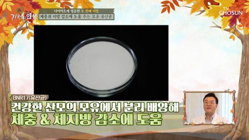 고도비만 탈출한 주인공의 비법 'TOP 2' 공개 #광고포함