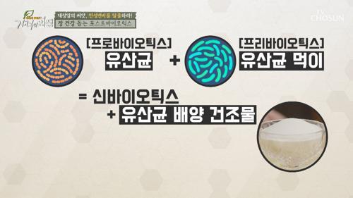 ▶유산균의 끝판왕◀ 장 건강에 도움 주는 포스트바이오틱스 TV CHOSUN 20210220 방송