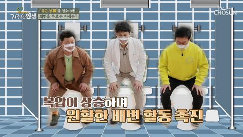 봄맞이 건강 리셋 묵은 장(腸)을 청소하는 법  TV CHOSUN 20210417 방송