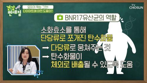 다이어트에 좋은 BNR17 유산균 #광고포함
