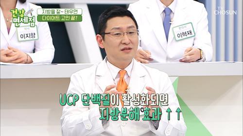 『이것』 활성화해야 '지방분해' 효과↗ #광고포함