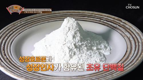 근육&연골 튼튼하게 해주는💪🏻 '초유 단백질' TV CHOSUN 210201 방송