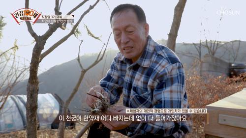 자연이 선물한 천연 밥상으로 직장암 3기 극복↗ TV CHOSUN 210322 방송