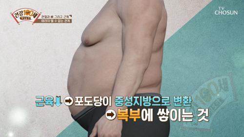 ※주목※ 근육은 당뇨와 고혈압과도 관련이 있다!! TV CHOSUN 210329 방송