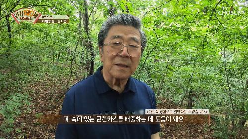 횡격막 근력 운동으로 폐활량을 늘리자-★ TV CHOSUN 2106719 방송