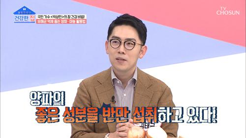 유해균 억제 돕는 '양파' 올바르게 섭취하는 방법은?! TV CHOSUN 20210308 방송
