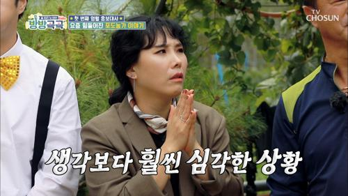 영월 명물 포도🍇 올해 태풍으로 힘들었던 농사ㅠㅠ #광고포함