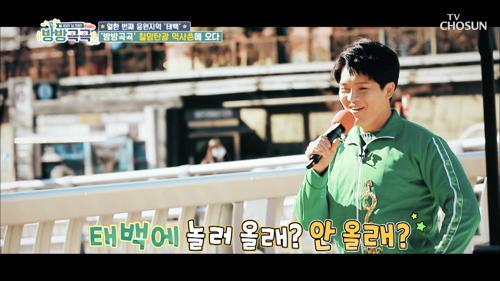 신인선☓김수찬☓이도진 태백에 놀러 '올래'♪ #광고포함