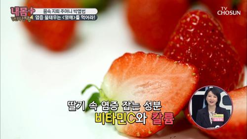 염증 불태우는 ♨_♨ 열매 '딸기' 영양분甲 ^^b