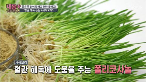 혈관 질환·다이어트 도움 ☆새싹보리☆