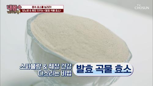 【발효 곡물 효소】 당뇨병 & 췌장 지키는 비법! #광고포함