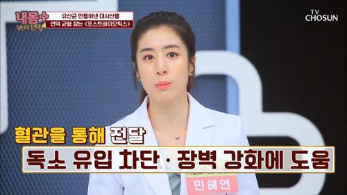 ❛이것❜으로 면역 균형 다스리고 건강 찾자👍🏻 #광고포함