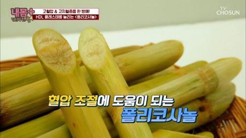 사탕수수 속 '폴리코사놀' 혈압 조절에 도움! TV CHOSUN 20210110 방송