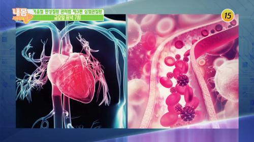 겨울철 만성질환 관리법 제3편 심혈관질환_내 몸 사용설명서 230회 예고