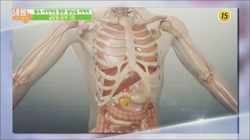 몸속 사각지대 췌장과 담낭을 지켜라!_내 몸 사용설명서 253회 예고