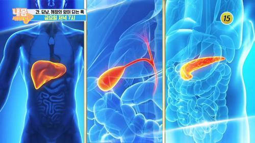 간, 담낭, 췌장의 암이 되는 혹_내 몸 사용설명서 277회 예고