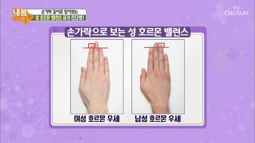 손가락 길이로 알아보는 초간단 호르몬 밸런스 체크방법!