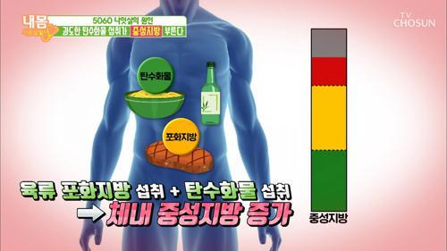 과도한 탄수화물 섭취가 '중성지방' 부른다!!!