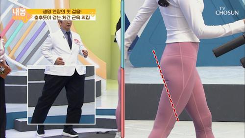 «생명 연장» 춤추듯이 걷는 체간 근육 워킹