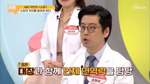 몸에서 가장 바쁜 장기 【소장】 세균 격전지!