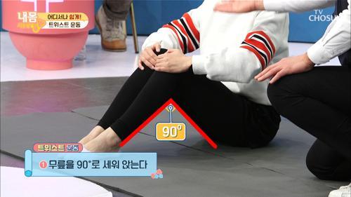 고관절 정복 방법 大 공개 ▶트위스트 운동◀  #광고포함