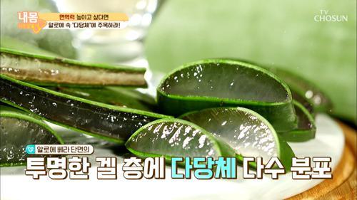 '감기·독감 예방'에 좋은 면역력 지킴이 ʚ알로에ɞ TV CHOSUN 20210122 방송