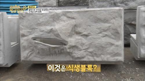 블록으로 안전을 완성하다, 신개념 옹벽 블록!