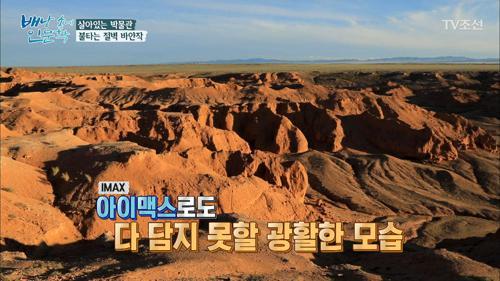 공룡의 흔적이 담긴 땅, 살아있는 박물관 '바얀작'
