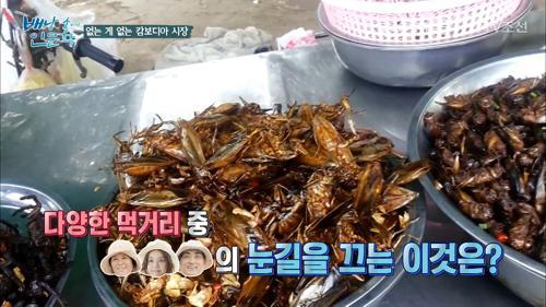 거미를 먹는다?! 요리된 곤충을 파는 캄보디아, 그 이유는?