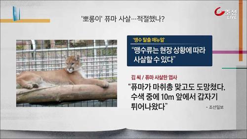 """퓨마 사살되자 """"동물원 폐지하라"""""""