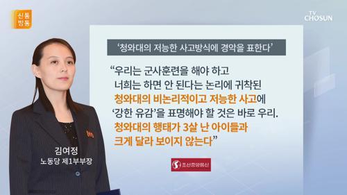 """한밤의 독설…김여정 """"靑의 저능한 사고에 경악"""""""