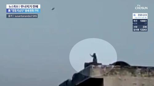 연 날리는 원숭이?…SNS서 동영상 화제