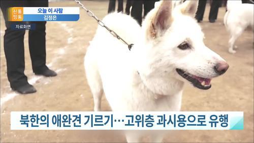 北 김정은, '애완견 금지령' 내린 이유는?