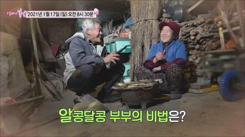 춘자 씨와 광진 씨의 산골 로맨스_엄마의 봄날 279회 예고 TV CHOSUN 210117 방송