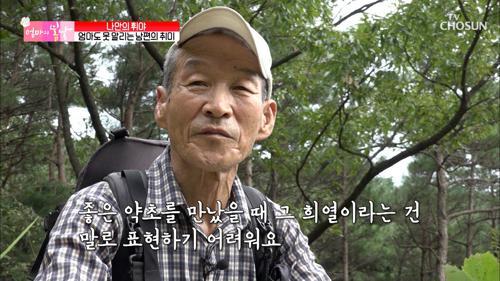 남편의 취미 '약초 캐기' feat. 벌은 무서워~