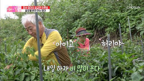 비가와도 쉬지 못하는 엄마ㅠㅠ feat. 매정한 남편