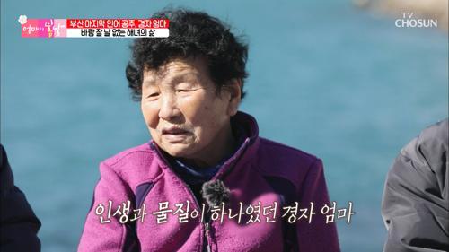 물질만 하면서 살았던 60년 세월.. 마지막 해녀가 된 엄마😥 TV CHOSUN 20210228 방송