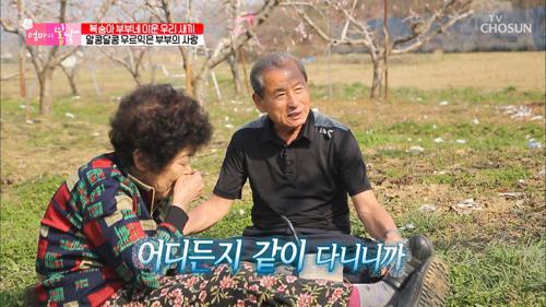 '복숭아꽃 보다 더 이쁘네' 잉꼬 부부의 사랑♡ TV CHOSUN 20210502 방송