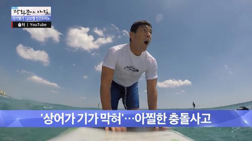 서핑 중에 죠스를 만나다?!