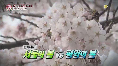서울의 봄 vs 평양의 봄_모란봉 클럽 28회 예고