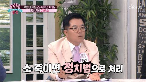 북한의 소는 「○○○○」 가 존재한다!!