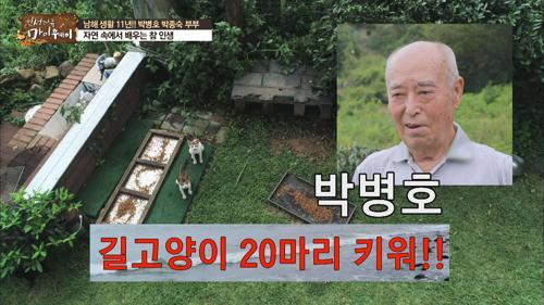 [선공개] 박병호 길고양이 20마리 키워!!
