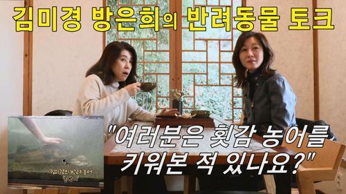 [선공개] 김미경 방은희의 반려동물 토크