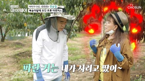 복숭아 밭 ★트롯 일꾼☆ 고마운 봉사활동♥